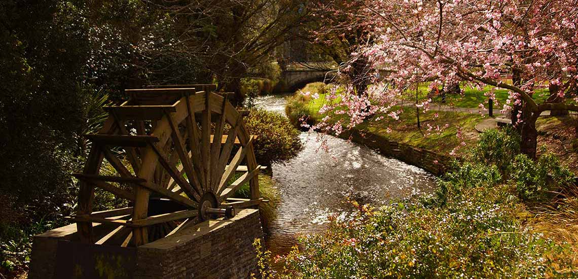 spring flowers next to water wheel